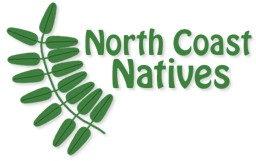 North Coast Natives